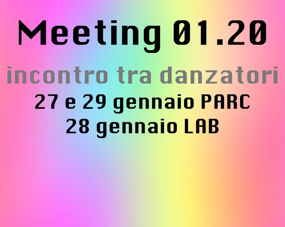 Meeting 01.20Un incontro tra danzatoriideato da Maria Vittoria Feltre, Sara Sguotti, Nicola Simone Cisternino