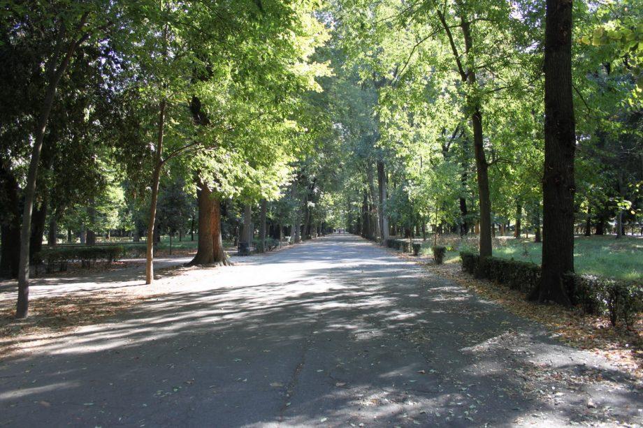 Dal 1° giugnoRiaperto il Centro Visitedel Parco delle Cascine